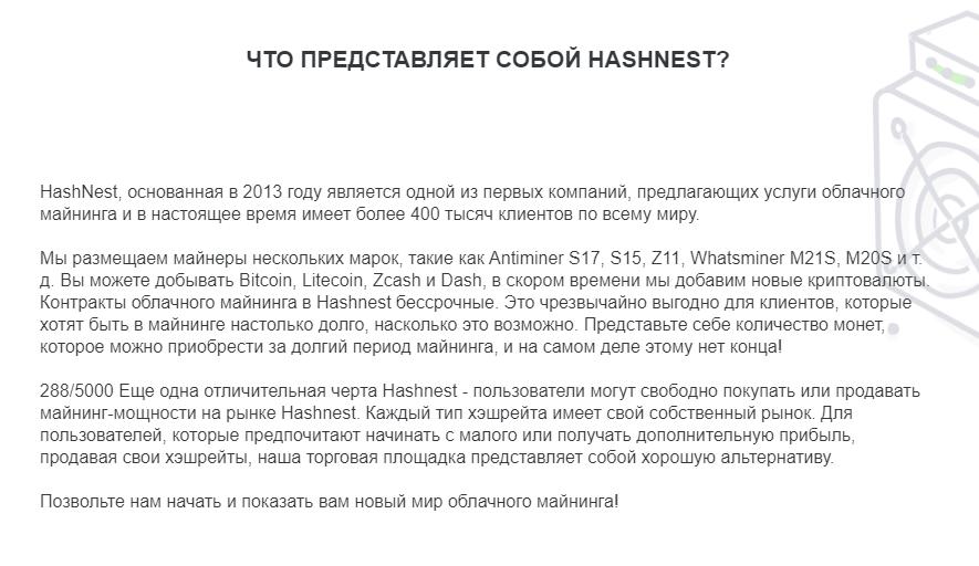 Hash Nest - обзор фирмы, Фото № 3 - 1-consult.net