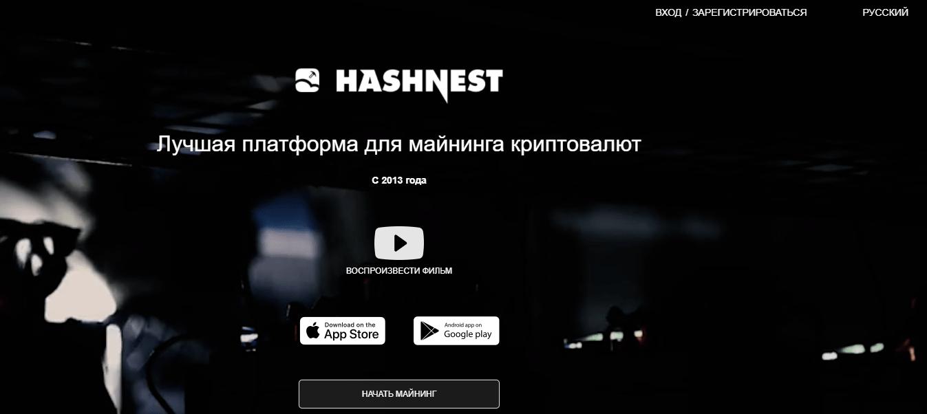 Hash Nest - обзор фирмы, Фото № 1 - 1-consult.net