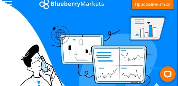 Анализ компании BlueberryMarkets, Фото № 1 - 1-consult.net