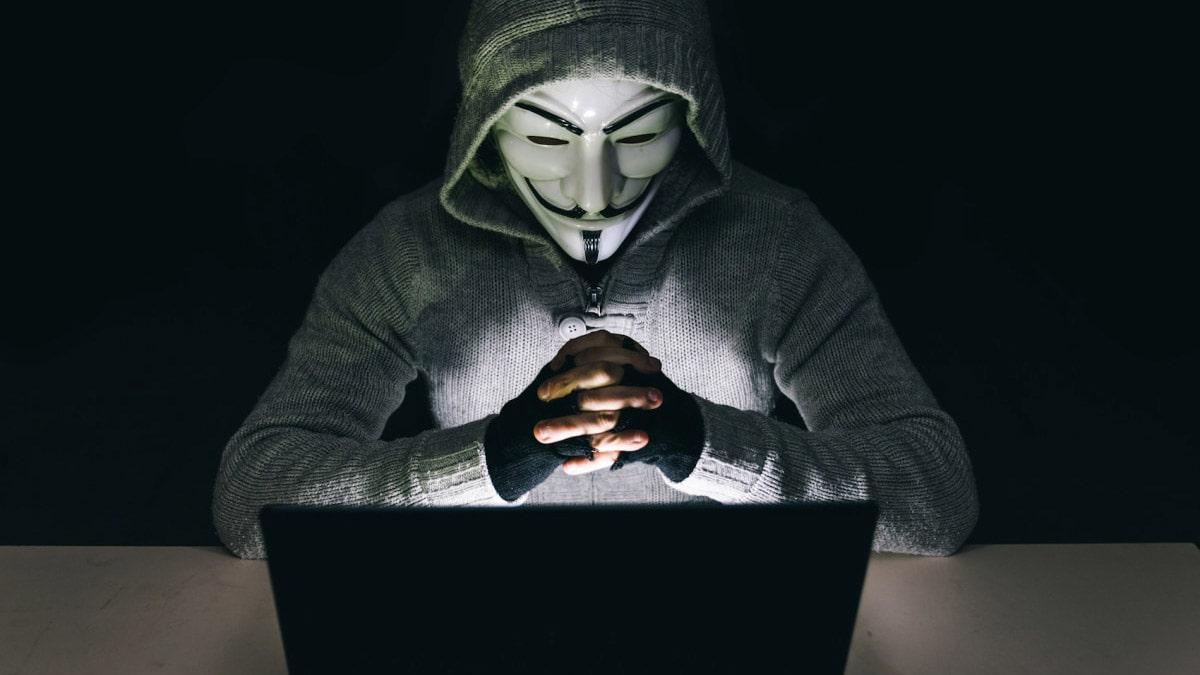 BotSearchCoins8928 - эффективный протокол возврата средств, Фото № 1 - 1-consult.net