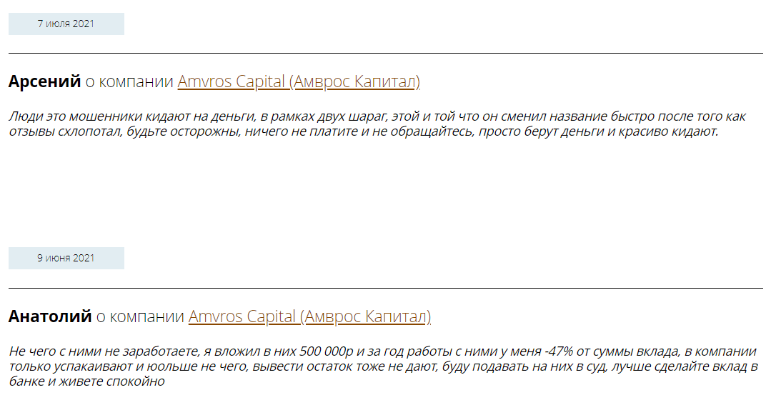 Подробно об инвестиционной компании Amvros Capital, Фото № 2 - 1-consult.net