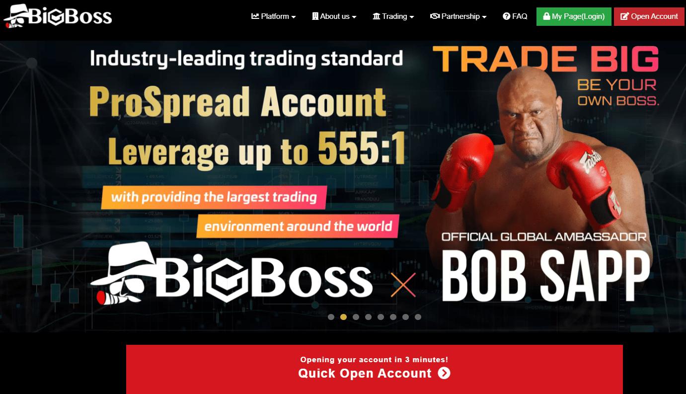 Вся информация о брокерской компании BigBoss, Фото № 3 - 1-consult.net