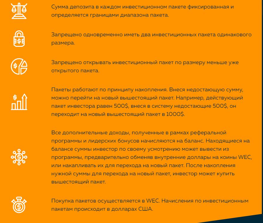 Вся информация о Web Token Profit, Фото № 5 - 1-consult.net
