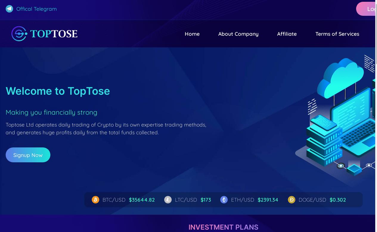 Вся информация о компании Toptose, Фото № 1 - 1-consult.net