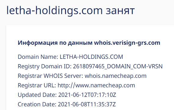 Подробный обзор об инвестиционной компании Letha Holdings, Фото № 2 - 1-consult.net