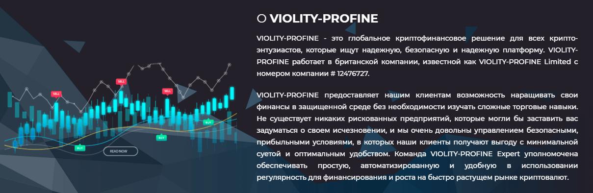 Violity Profine - пирамида на базе криптовалюты, Фото № 2 - 1-consult.net