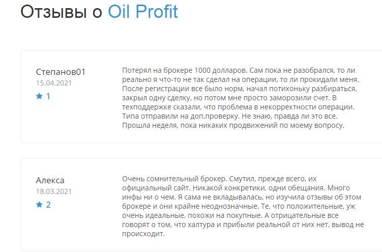 Подробно о проекте Oil Profit, Фото № 6 - 1-consult.net