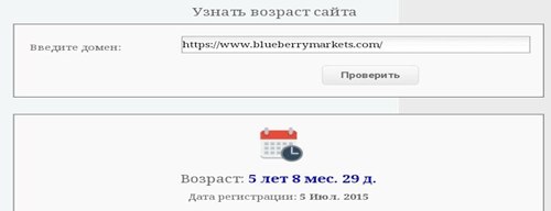 Анализ компании BlueberryMarkets, Фото № 3 - 1-consult.net