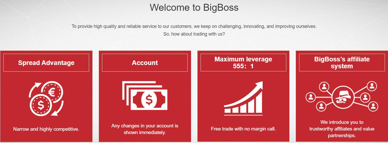 Вся информация о брокерской компании BigBoss, Фото № 1 - 1-consult.net