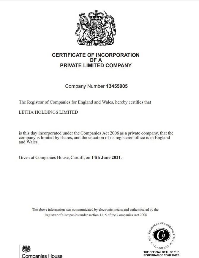 Подробный обзор об инвестиционной компании Letha Holdings, Фото № 3 - 1-consult.net